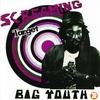 Couverture de l'album Screaming Target
