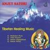 Couverture de l'album Tibetan Healing Music