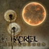Cover of the album Liberosis