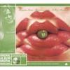 Cover of the album Die grüne Reise - The Green Journey