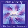 Cover of the album Bliss of Being
