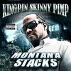 Cover of the album Montana Stacks