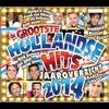 Couverture de l'album Hollandse Hits Jaaroverzicht 2014