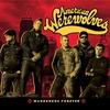 Couverture de l'album Wanderers Forever