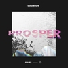 Cover of the album Prosper