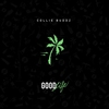 Couverture de l'album Good Life - Single
