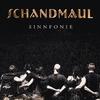 Couverture de l'album Sinnfonie