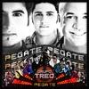 Couverture de l'album Pegate