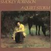 Cover of the album A Quiet Storm