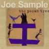 Cover of the album The Pecan Tree