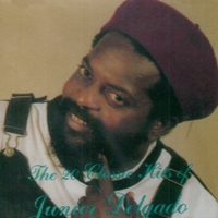 Cover of the track The 20 Classic Hits of Junior Delgado