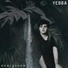 Couverture de l'album Evergreen - Single