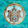 Cover of the track Silent Voices