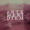 Couverture de l'album Ante Meridiem - Single