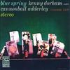 Couverture de l'album Blue Spring (Instrumental) [Remastered]
