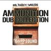 Couverture de l'album Ammunition Dub Collection (International Version)
