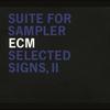 Couverture de l'album Selected Signs II