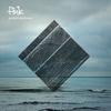 Cover of the album Perfect Darkness (Bonus Video Version)