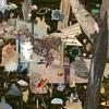 Cover of the album ESTOILE NAIANT