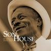 Couverture de l'album The Original Delta Blues (Mojo Workin': Blues For The Next Generation)