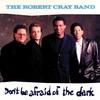 Couverture de l'album Don't Be Afraid of the Dark
