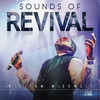 Cover of the album Sounds of Revival