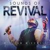 Couverture de l'album Sounds of Revival