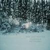 Couverture de l'album The Last Winter