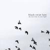 Couverture de l'album The Last Time in Your Light