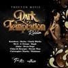 Couverture de l'album Dark Temptation Riddim