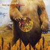 Couverture de l'album This Wilderlessness