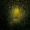 Couverture de l'album Burst Apart (Deluxe Version)