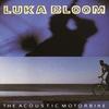 Couverture de l'album The Acoustic Motorbike