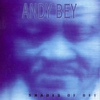 Couverture de l'album Shades of Bey