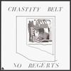 Couverture de l'album No Regerts