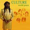 Couverture de l'album World Peace