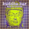 Couverture de l'album Buddha-Bar: Best of Electro - Rare Grooves