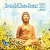 Cover of the album Buddha-Bar XI