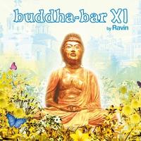 Cover of the track Buddha-Bar XI