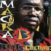 Couverture de l'album Roots & Culture