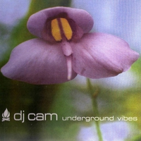 Cover of the track Underground Vibes