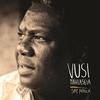 Couverture de l'album Say Africa