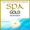 Cover of the album Spa Gold