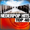 Cover of the album Nederpop Hits Top 100