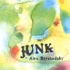 Couverture de l'album Junk