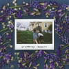Couverture de l'album At Weddings