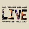 Couverture de l'album Live (with Steve Gadd & Nicklas Sample)