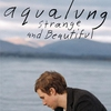 Cover of the album Strange and Beautiful