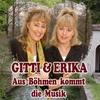Cover of the album Aus Böhmen kommt die Musik