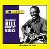 Couverture de l'album Mississippi Hill Country Blues